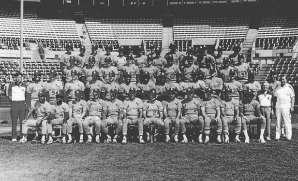 St. Louis Cardinals 1982