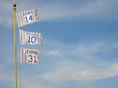 Cubs Flags 1