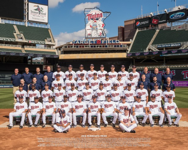 Minnesota Twins 2010