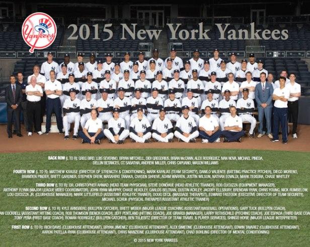 New York Yankees 2015