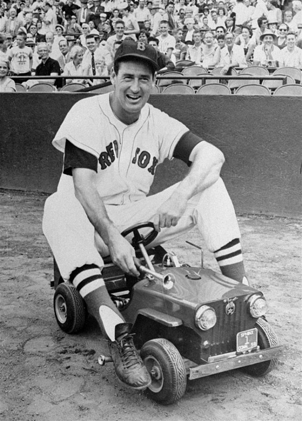 Ted Williams 15