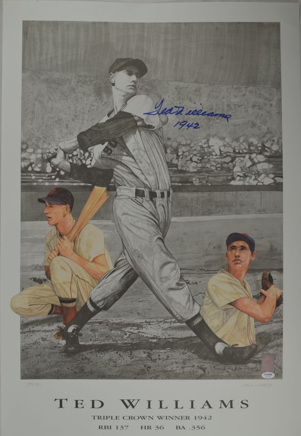 Ted Williams 17