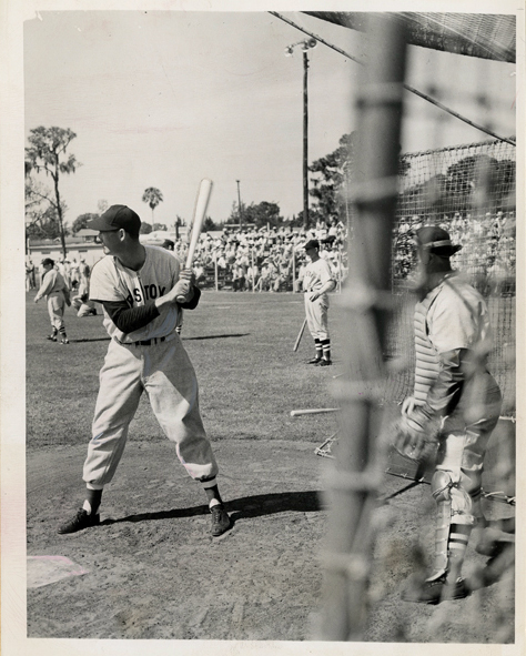 Ted Williams 8